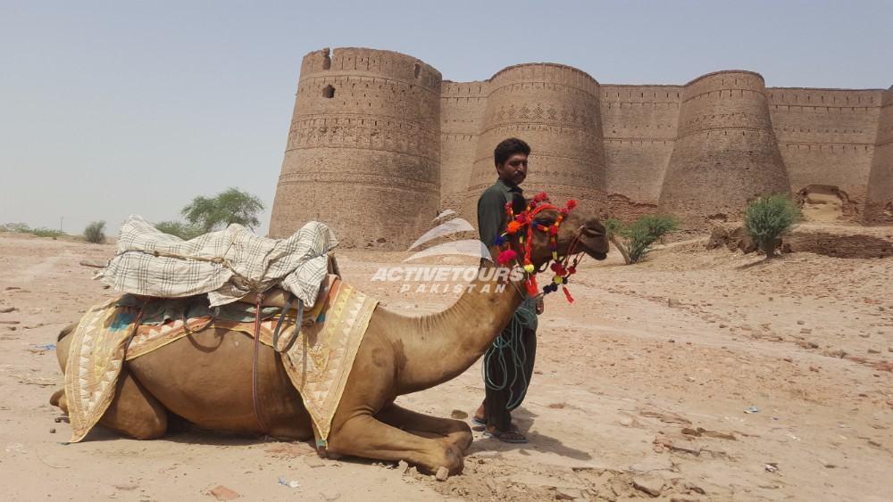 Cholistan Desert Camel Safari Active Tours Pakistan